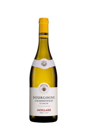 Rượu Vang Trắng Moillard Bourgogne Chardonnay Tradition