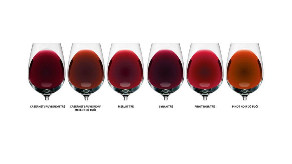Bảng Màu Sắc Của Rượu Vang Đỏ