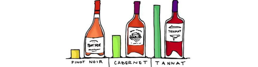 Một Số Loại Rượu Vang Đỏ Phù Hợp Với Bạn Hơn Những Người Khác
