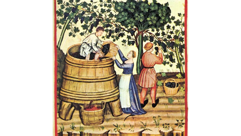 Người Cổ Đại Đã Sản Xuất Rượu Vang Như Thế Nào