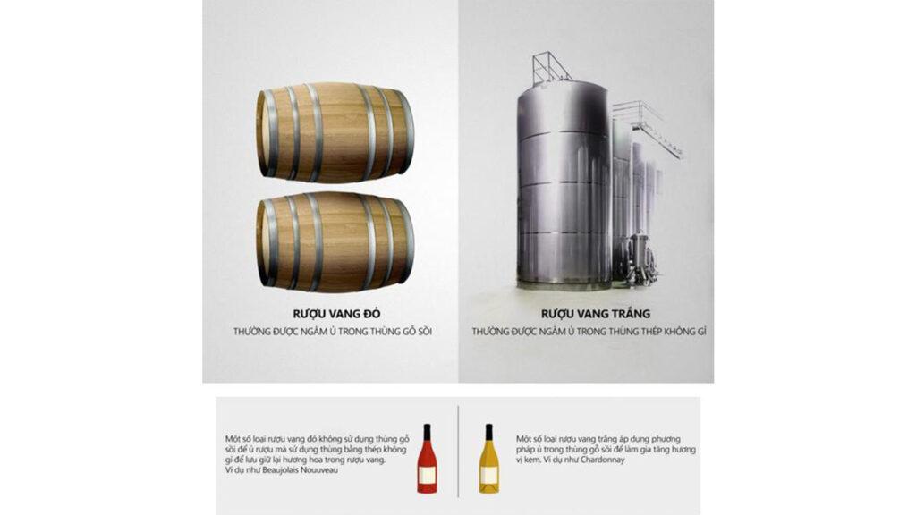 Quá Trình Sản Xuất Rượu Vang Đỏ Và Rượu Vang Trắng