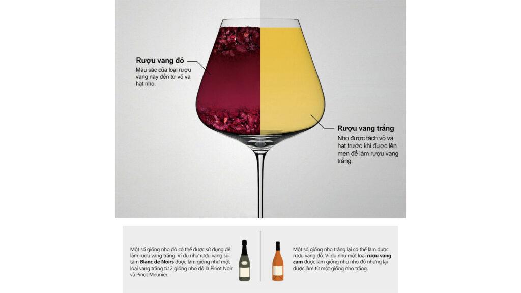 Rượu Vang Đỏ Và Rượu Vang Trắng