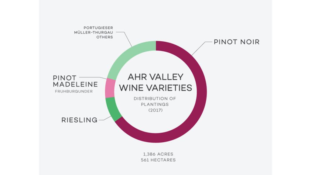 Rượu Vang Từ Nho Pinot Noir