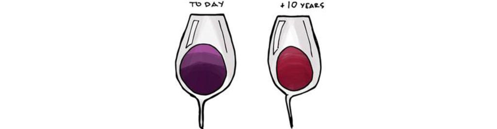 Rượu Lâu Năm Màu Sắc Sẽ Nhạt Dần
