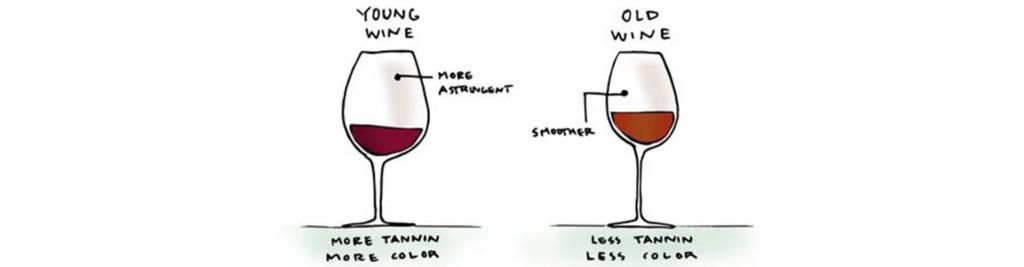 Rượu Trẻ Tốt Hơn Rượu Lâu Năm