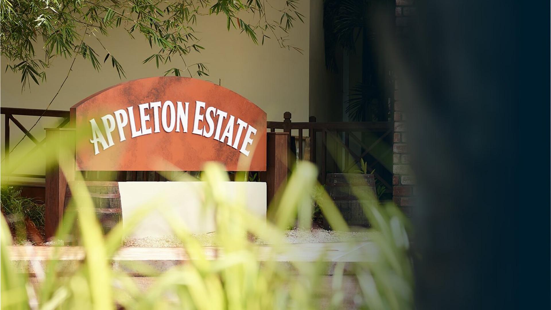 Rượu Appleton Estate