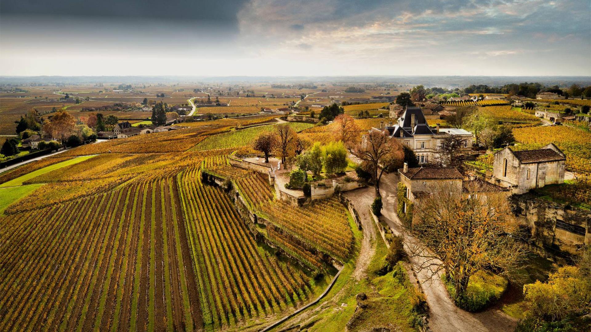 Rượu Vang Chateau Ausone