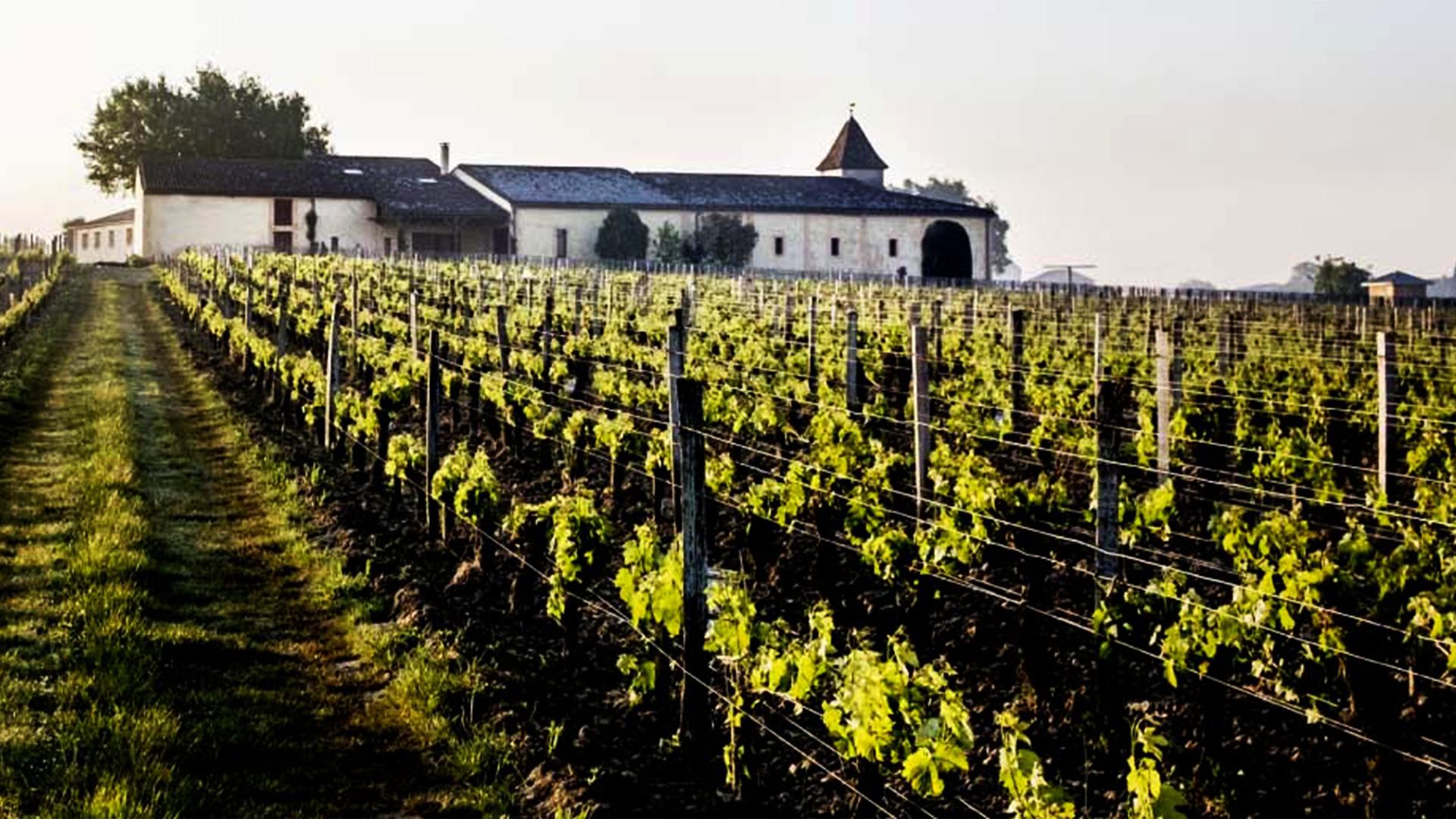 Rượu Vang Clos L'Eglise