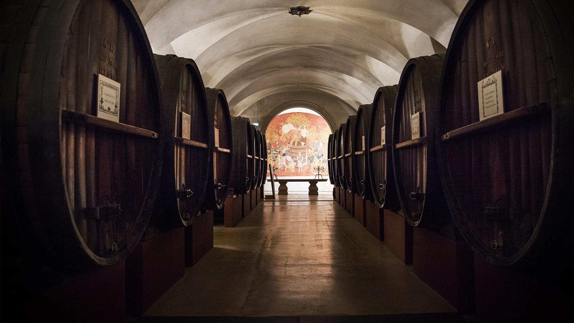 Rượu Vang Patriarche Pere et Fils