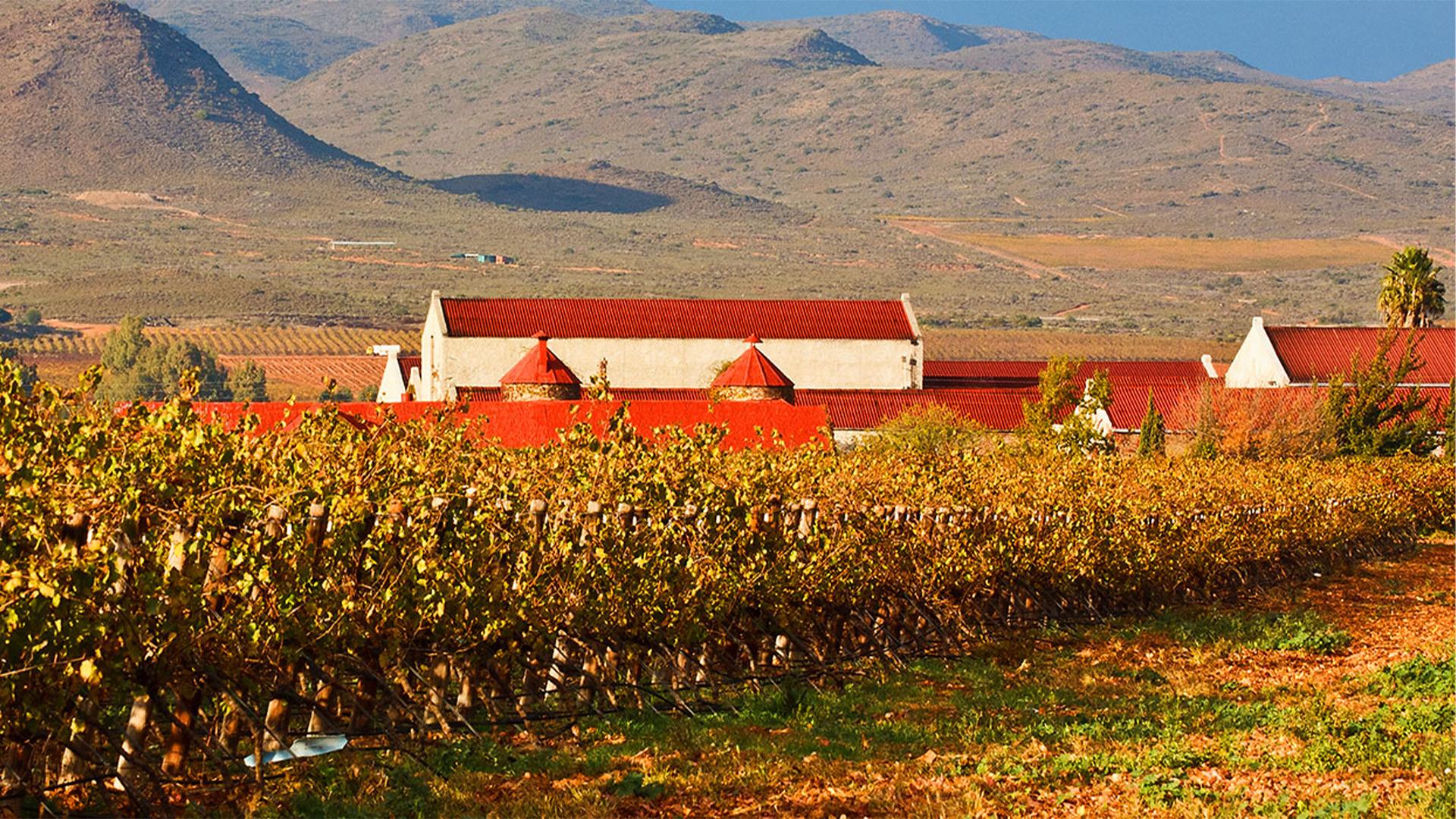 Rượu Vang Springfield Estate Wines