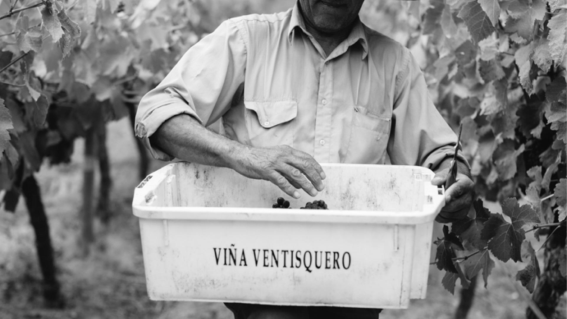 Rượu Vang Ventisquero