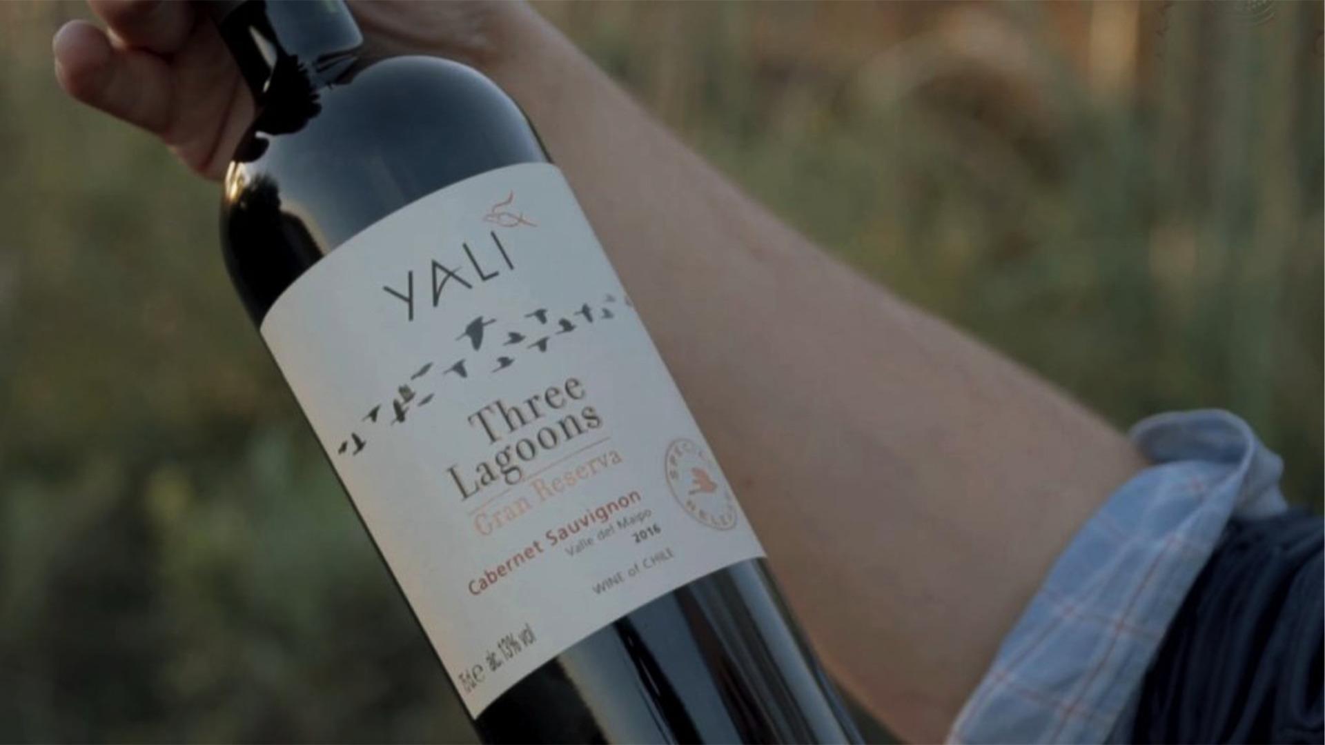 Rượu Vang Yali